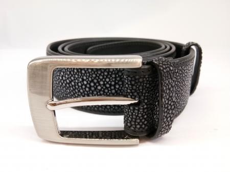 stingray belt